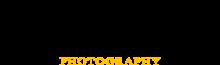 Bride Light Logo